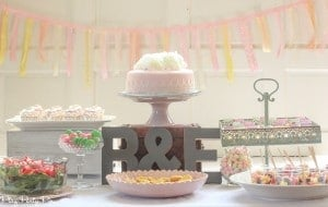 Blushing bride bridal shower by playpartyplan.com