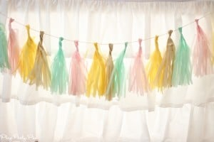 Blushing_Bride_Shower_Tissue_Garland_Full (1 of 1)