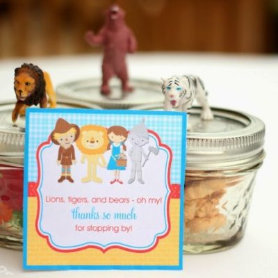 Wizard of Oz Party Favor and Treat Ideas