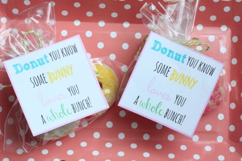 Spring treat ideas and free printable gift tag love this cute spring or easter gift idea give someone mini donuts with this free negle Choice Image
