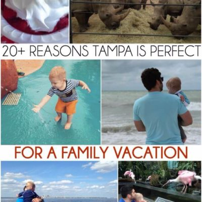 Things to Do in Tampa Florida with Kids