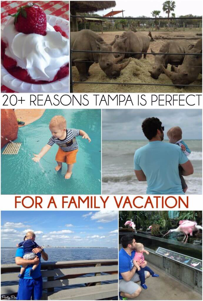 I had no idea there were so many awesome things to do in Tampa, definitely looks like one of the best places to vacation with kids!