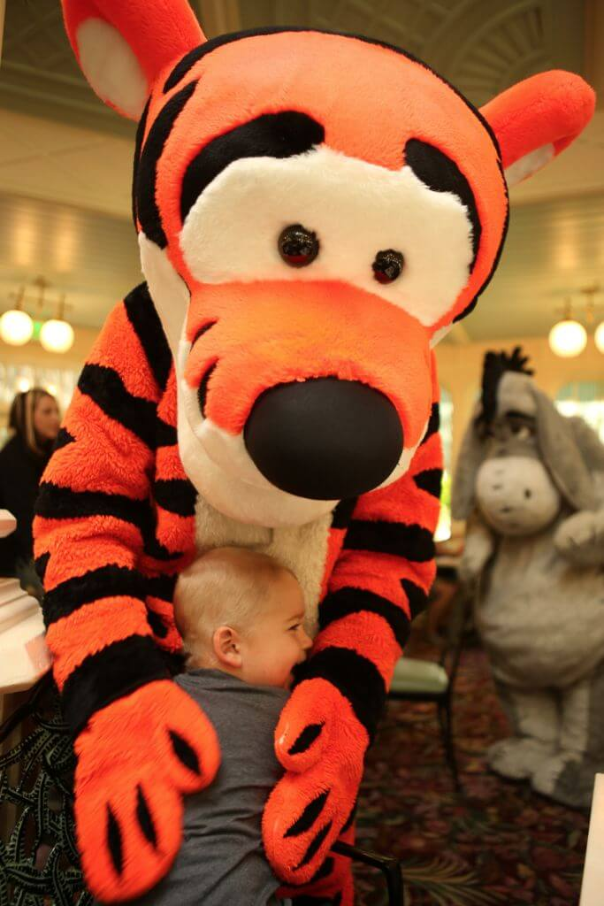 If you have just one day to spend at Disney World, make sure to read these tips before you go!