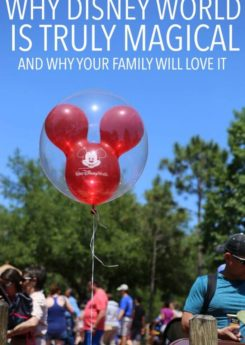 Why Disney is so magical and why your family will love it!