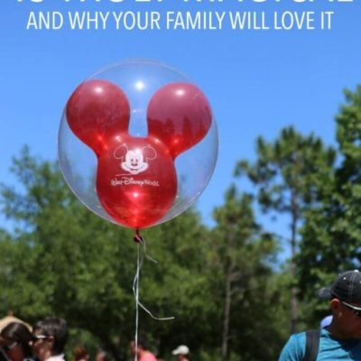 The Most Wonderful Things About Disney World