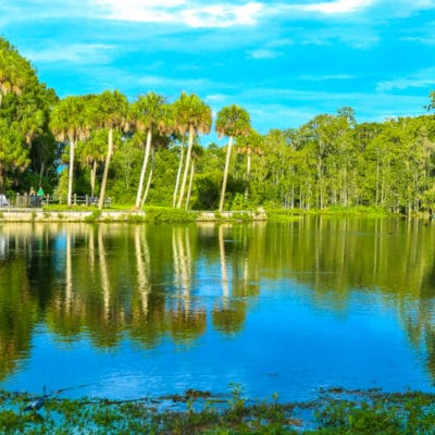 The Perfect 48 Hour Guide to Family Fun in Ocala Florida