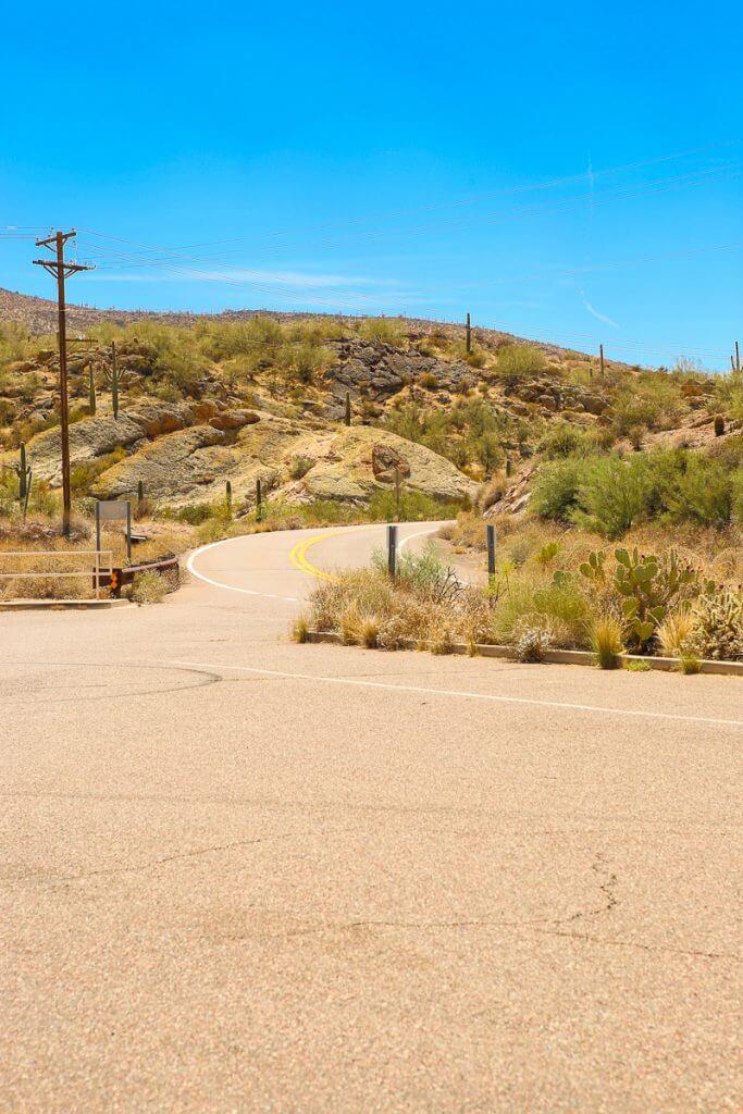 Phoenix-Summer-2