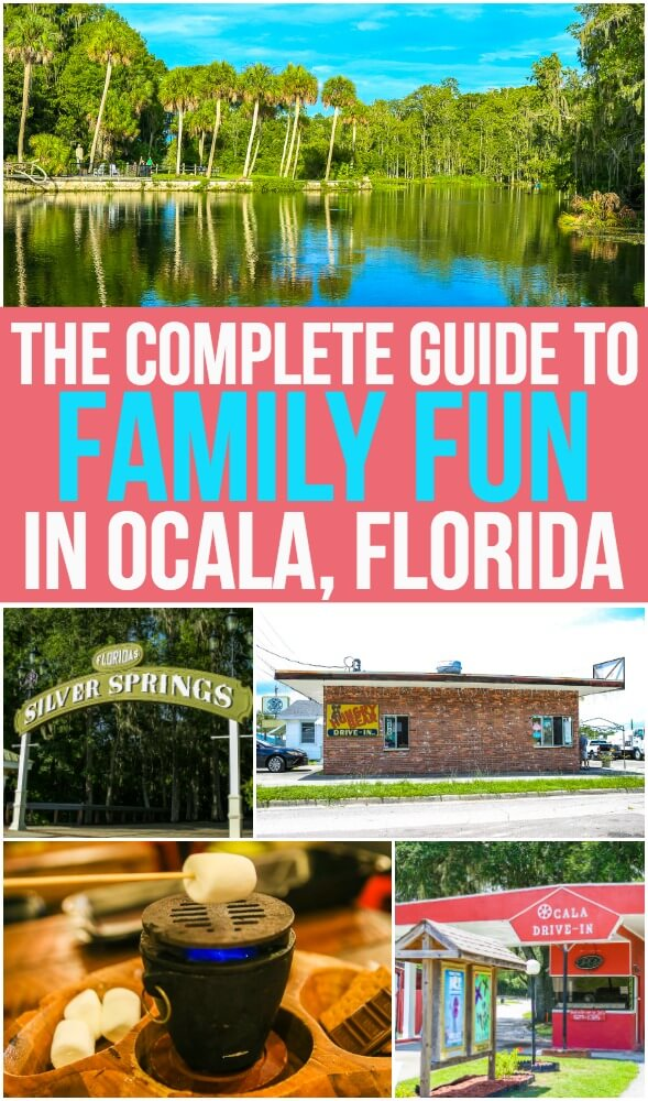 Looking for great family travel destinations? Ocala, Florida is perfect for families with kids who want to stay in the USA or who want to travel on a budget! And this guide has all of the tips and ideas you need for the perfect weekend in Ocala!