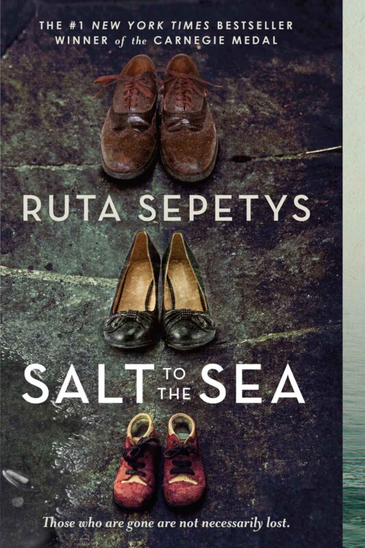 Cover of the book Salt to the Sea