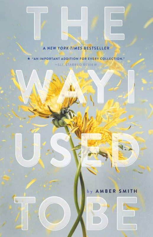 Cover of the book The Way I Used to Be