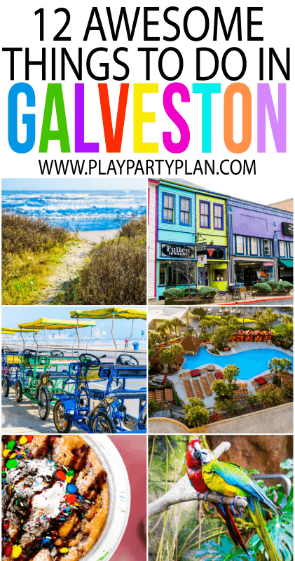 The ultimate guide of things to do in Galveston Texas, it's not just someone you can go on a cruise! With everything from an indoor rainforest to an awesome waterpark, there's so much more than just cruises out of Galveston!