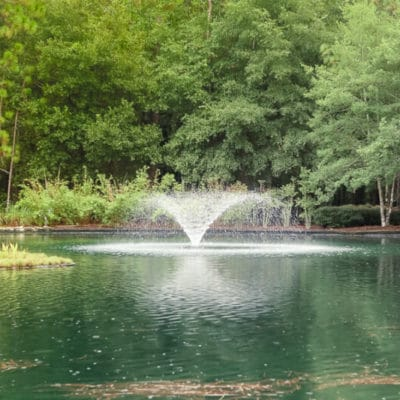 Places to Enjoy the Outdoors in Ocala Florida