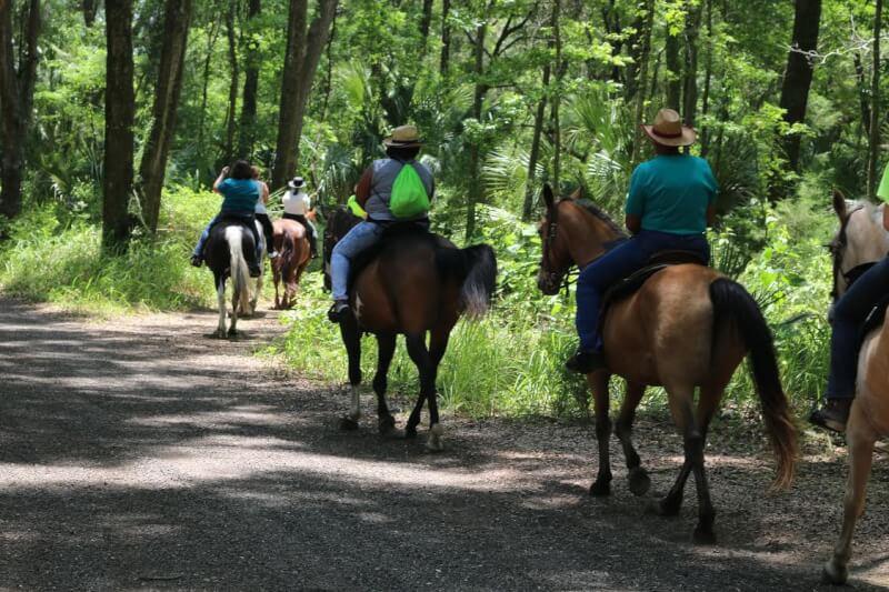 ocala-horseback