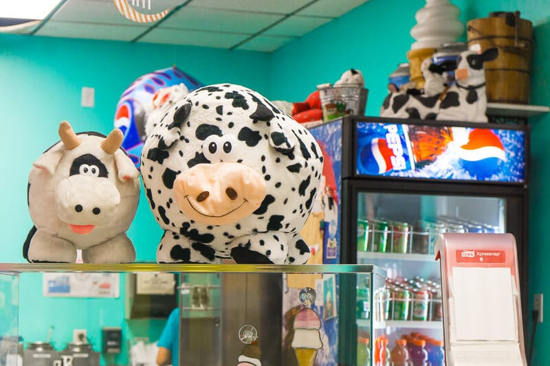 Stuffed cows at Cowlicks