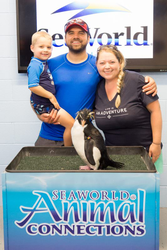 SeaWorld San Antonio has a plethora of animal interactions