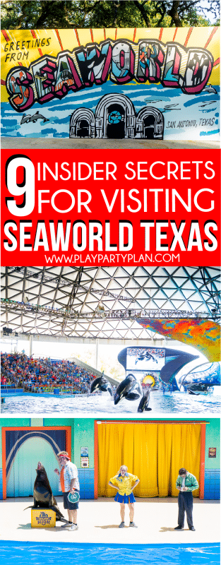 Tips for visiting SeaWorld San Antonio TX