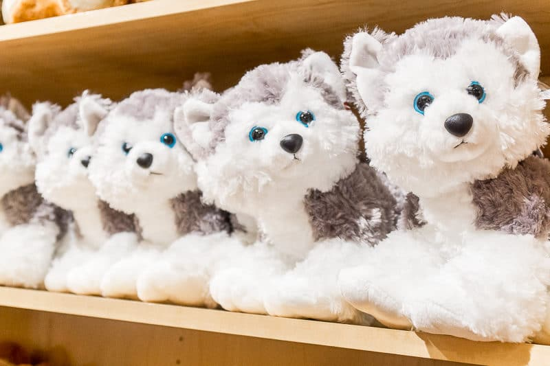 Great Wolf Lodge Grapevine has about a million types of stuffed wolves for sale