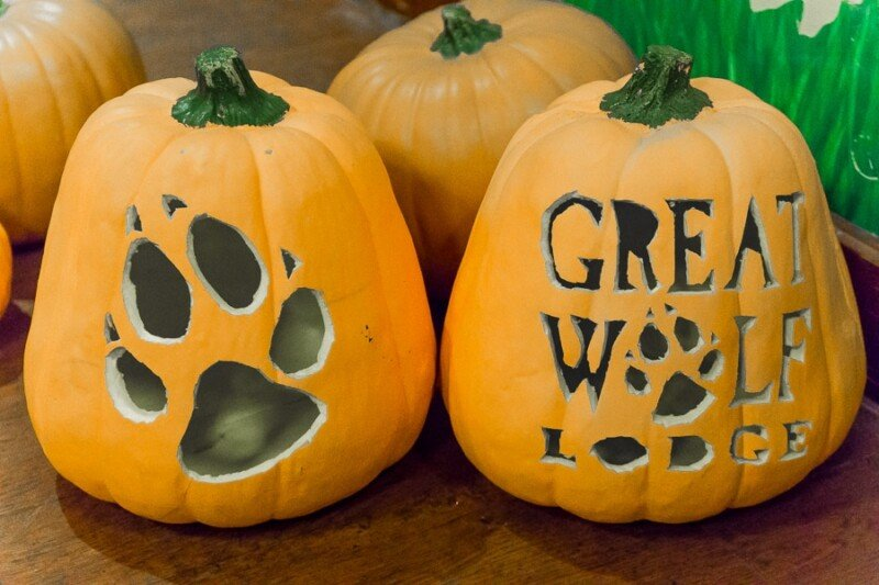 Decorate pumpkins at Great Wolf Lodge's Howloween celebration