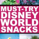 Best ever Disney World snacks and desserts! A bucket list of 20 best quick services snacks to get at Magic Kingdom, Hollywood Studios, Epcot, and Animal Kingdom in 2019! Pictures, reviews, and which ones are best if you have a small budget!