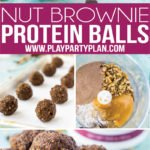 These no bake chocolate brownie protein balls are a healthy alternative when you're craving something sweet! They're gluten free and use cocoa powder and low carb chocolate chips for a hint of sweetness! They're easy to make and great for everyone - for kids and for adults!