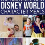 The ultimate guide to Disney World character dining updated for 2019! A list of best places to get breakfast, which resorts have character meals, best for families, and more! And individual reviews of every single Disney character meal!