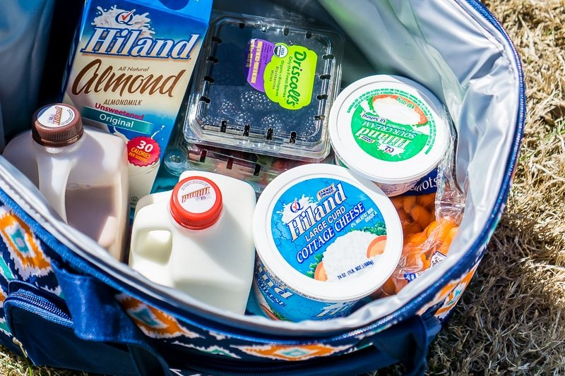 Packing the cooler with healthy snacks is almost as important as planning road trip games
