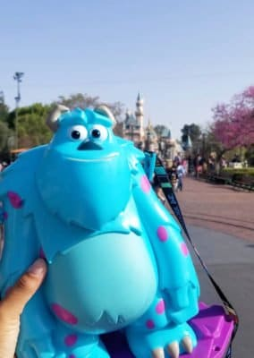 Sully popcorn bucket at Pixar Fest at Disneyland Resort