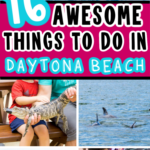 Collage of things to do in Daytona Beach for Pinterest