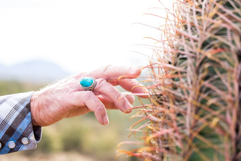 Touching a cactus on a Fort Mcdowell adventures tour