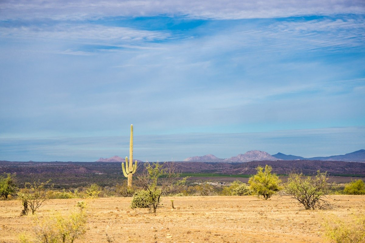 Getting into the desert is one of the best things to do in Phoenix
