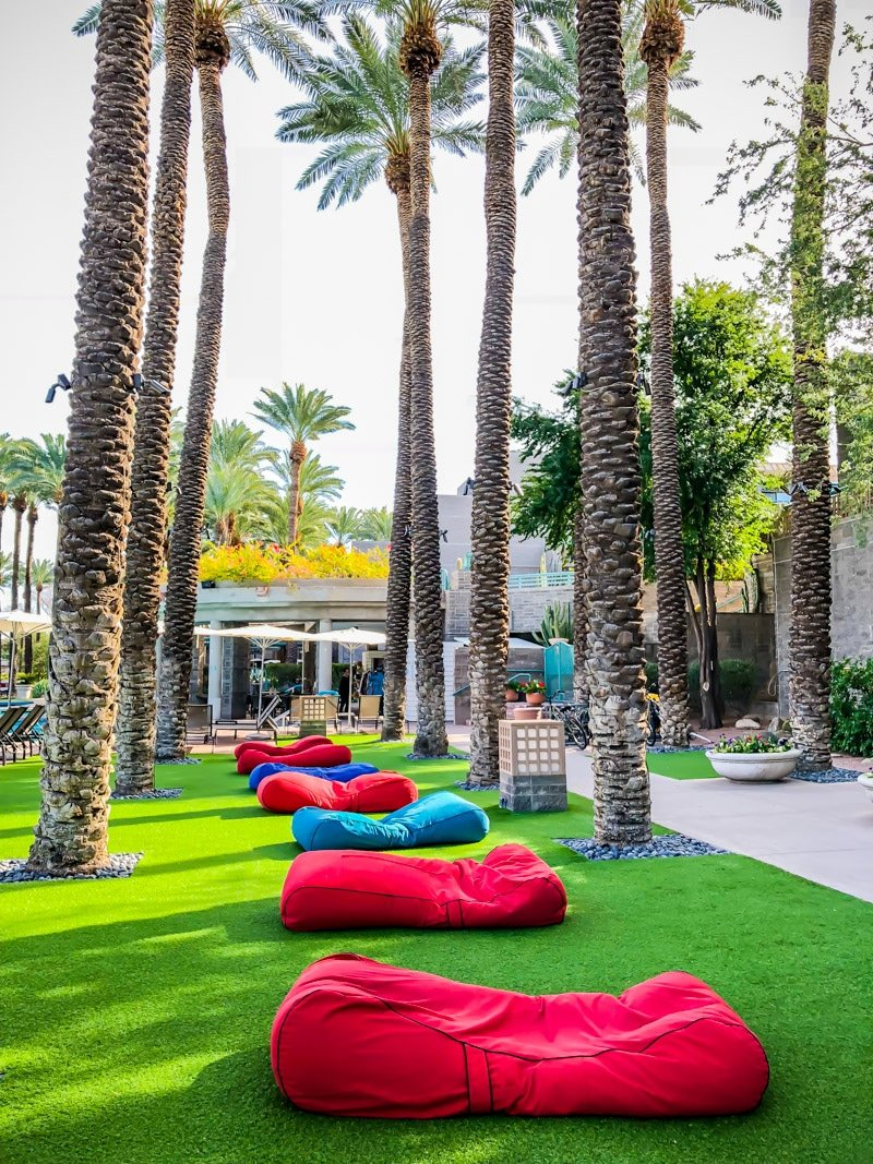 Lounge chairs on the grass outside of the best best family resorts in Phoenix