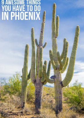 9 Unique & Fun Things to Do in Phoenix AZ