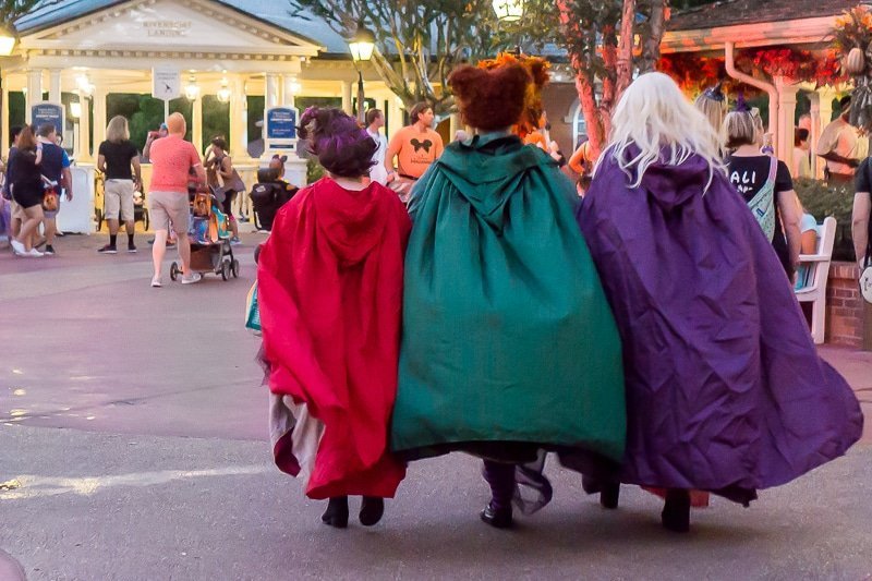 Women dressed up as Hocus Pocus witches at Mickey's Not So Scary Halloween Party