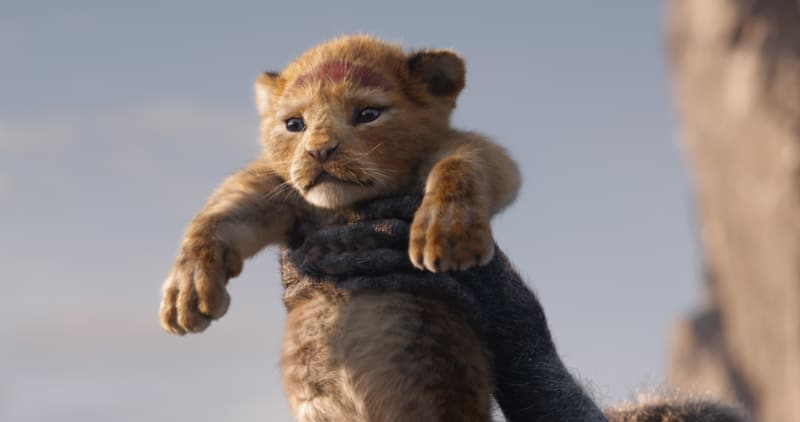 Lion King cub photo in a Disney movies list