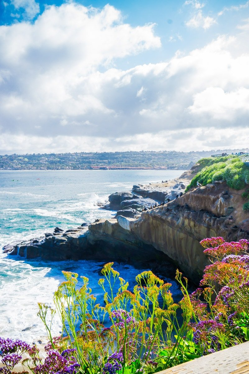 La Jolla coastline from a surprise vacation