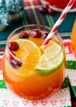 Glass of Christmas punch
