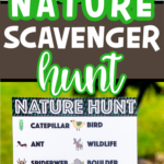Two pictures of nature scavenger hunt