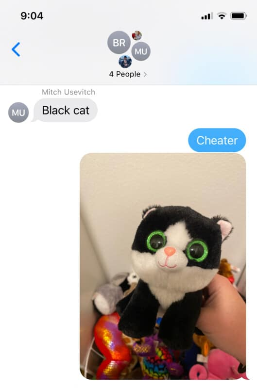A photo screenshot with an image of a stuffed black cat