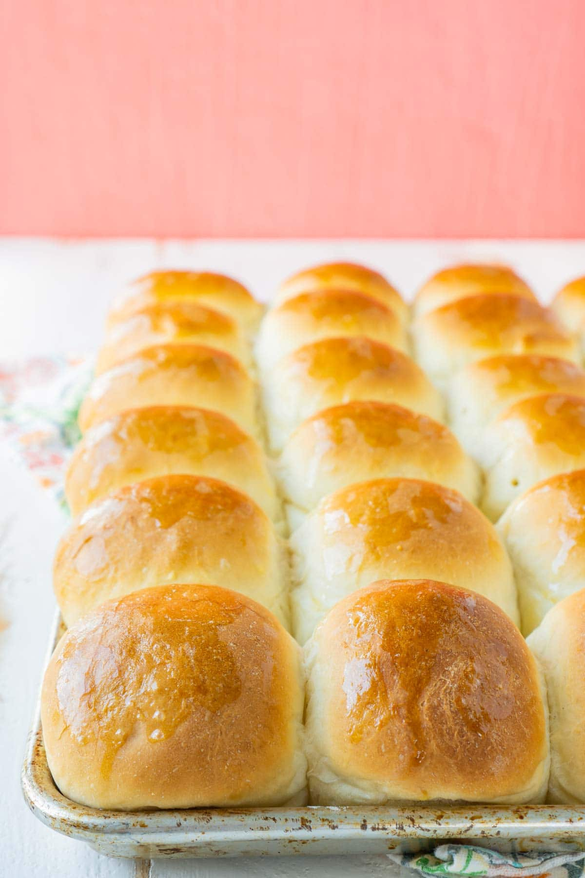 A baking sheet full of homemade yeast rolls