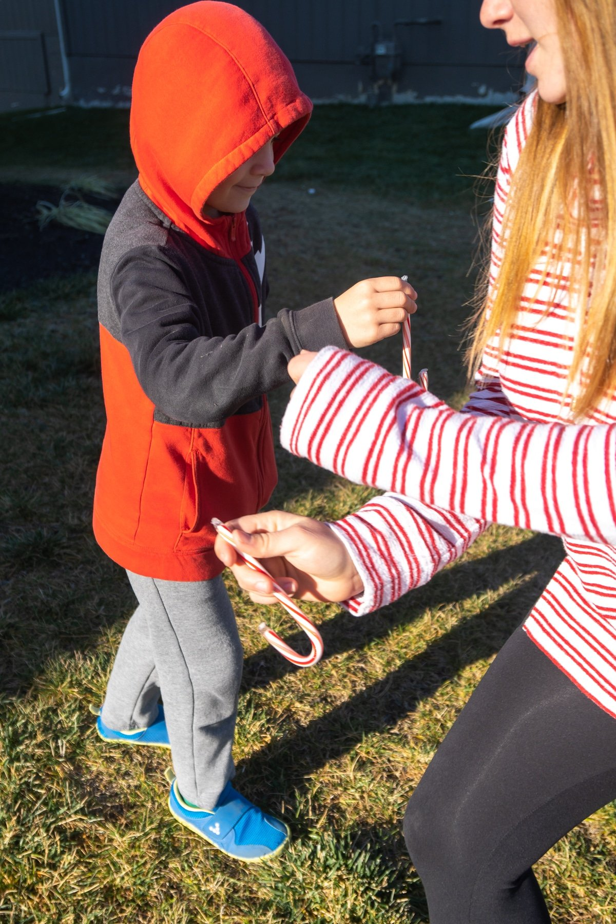 Woman and child hanging candy canes to each other