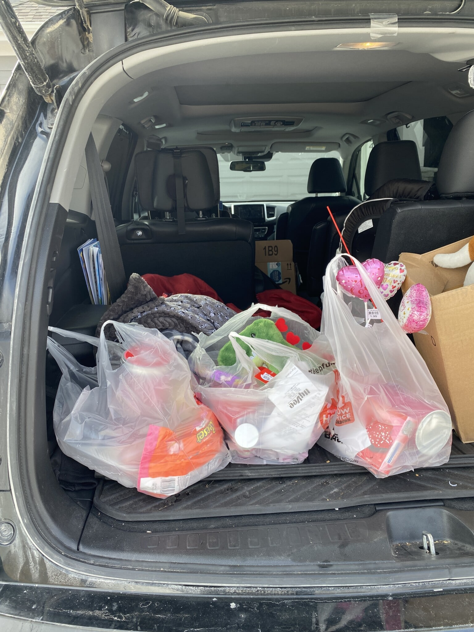 Hy-Vee bags in the back of a car