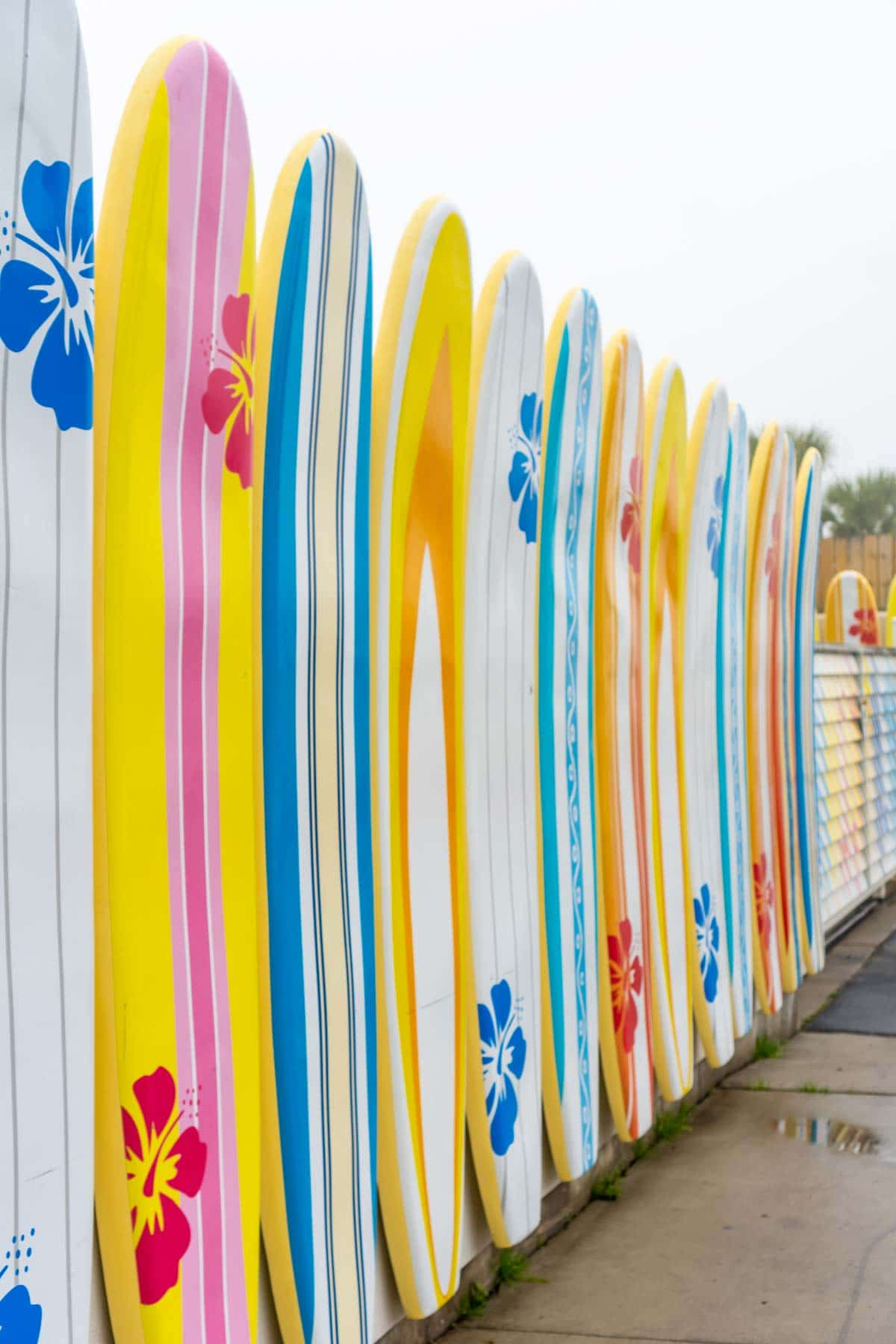 Surfboards on a wall at Margaritaville Lake Conroe