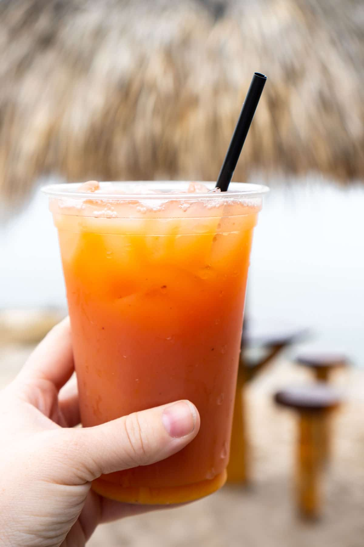 pup's punch at margaritaville lake conroe