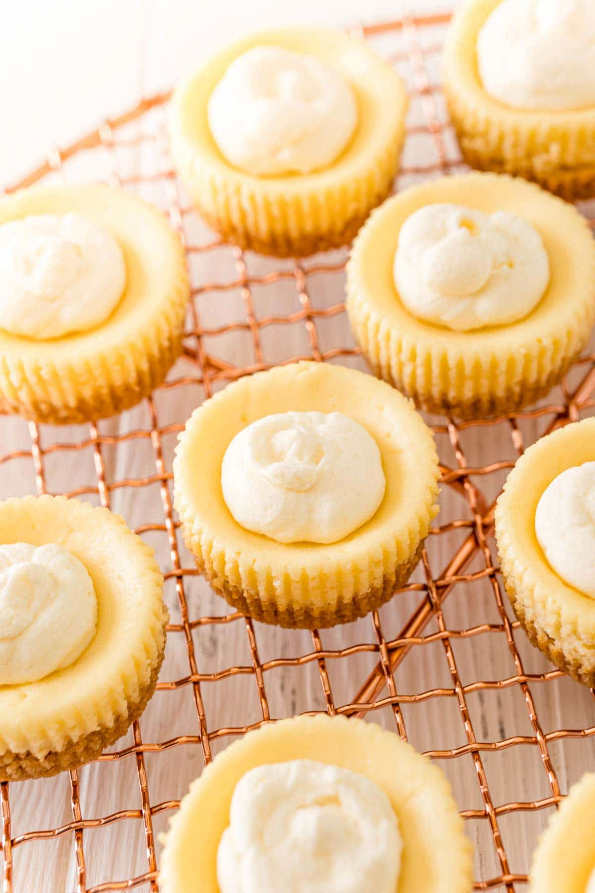 mini egg cheesecakes with piped topping on top