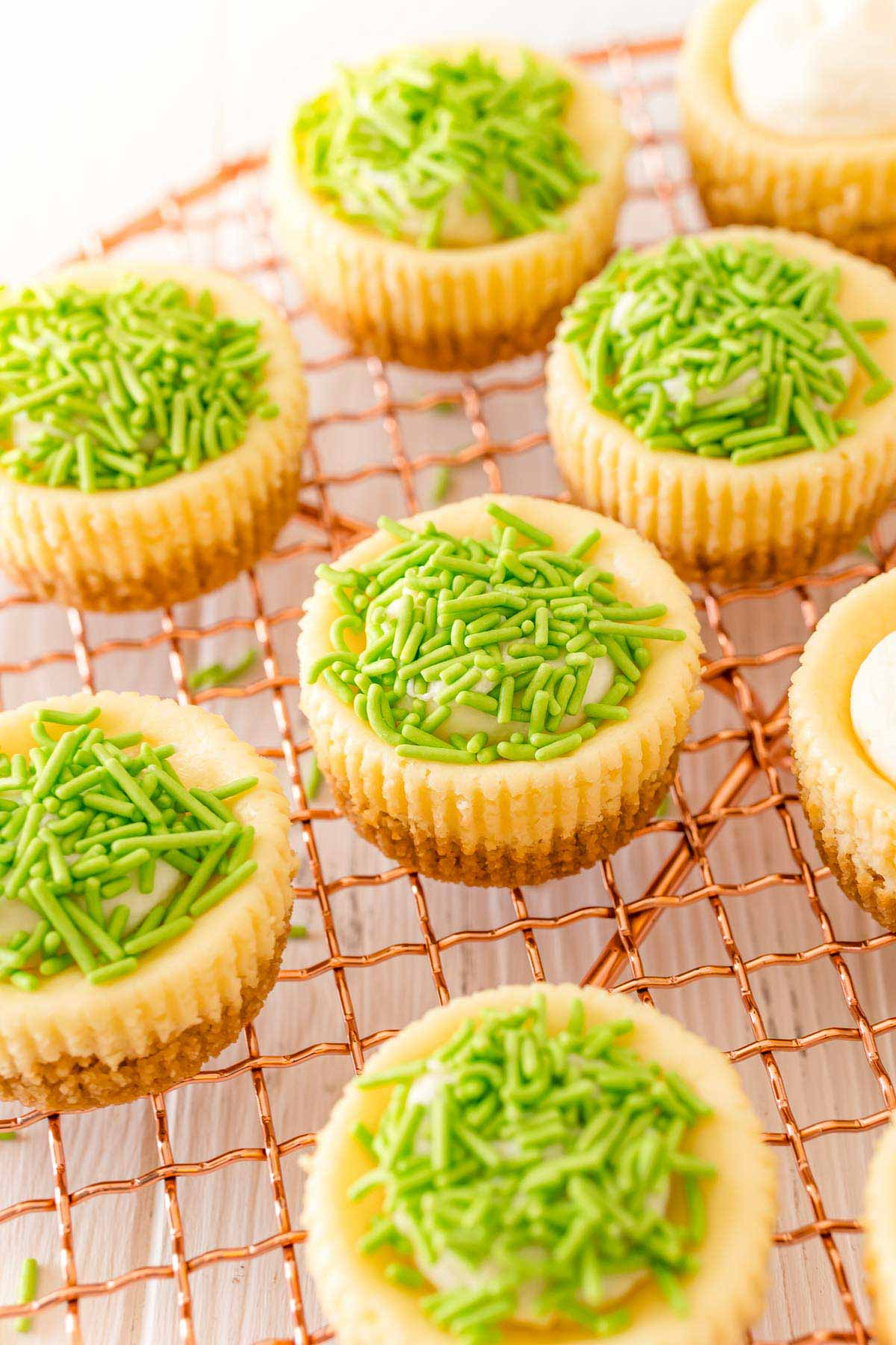 group of mini egg cheesecake with green sprinkles on top
