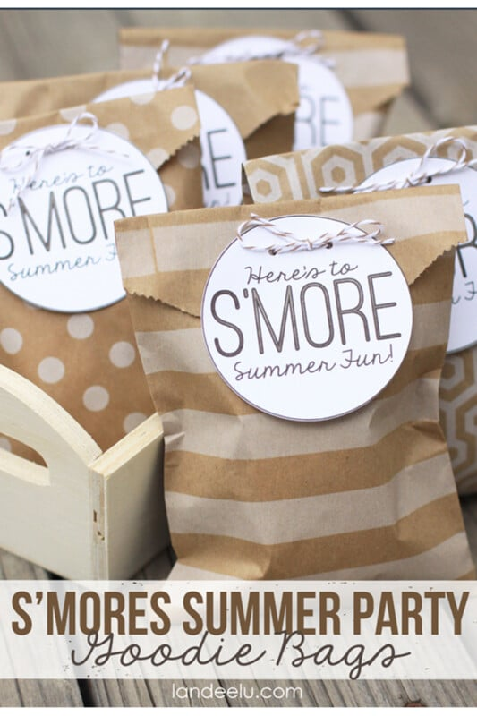 Bags with s'more themed bags on them