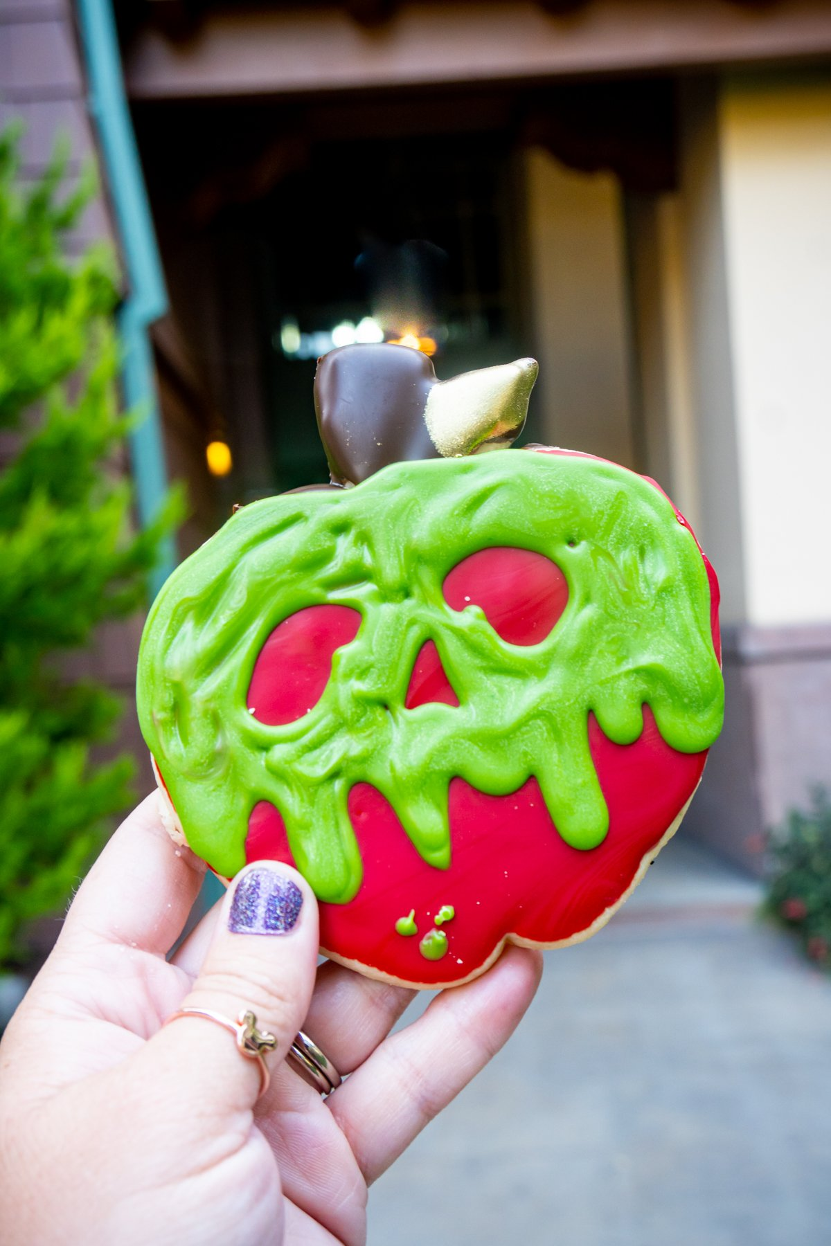 hand holding a poison apple sugar cookie