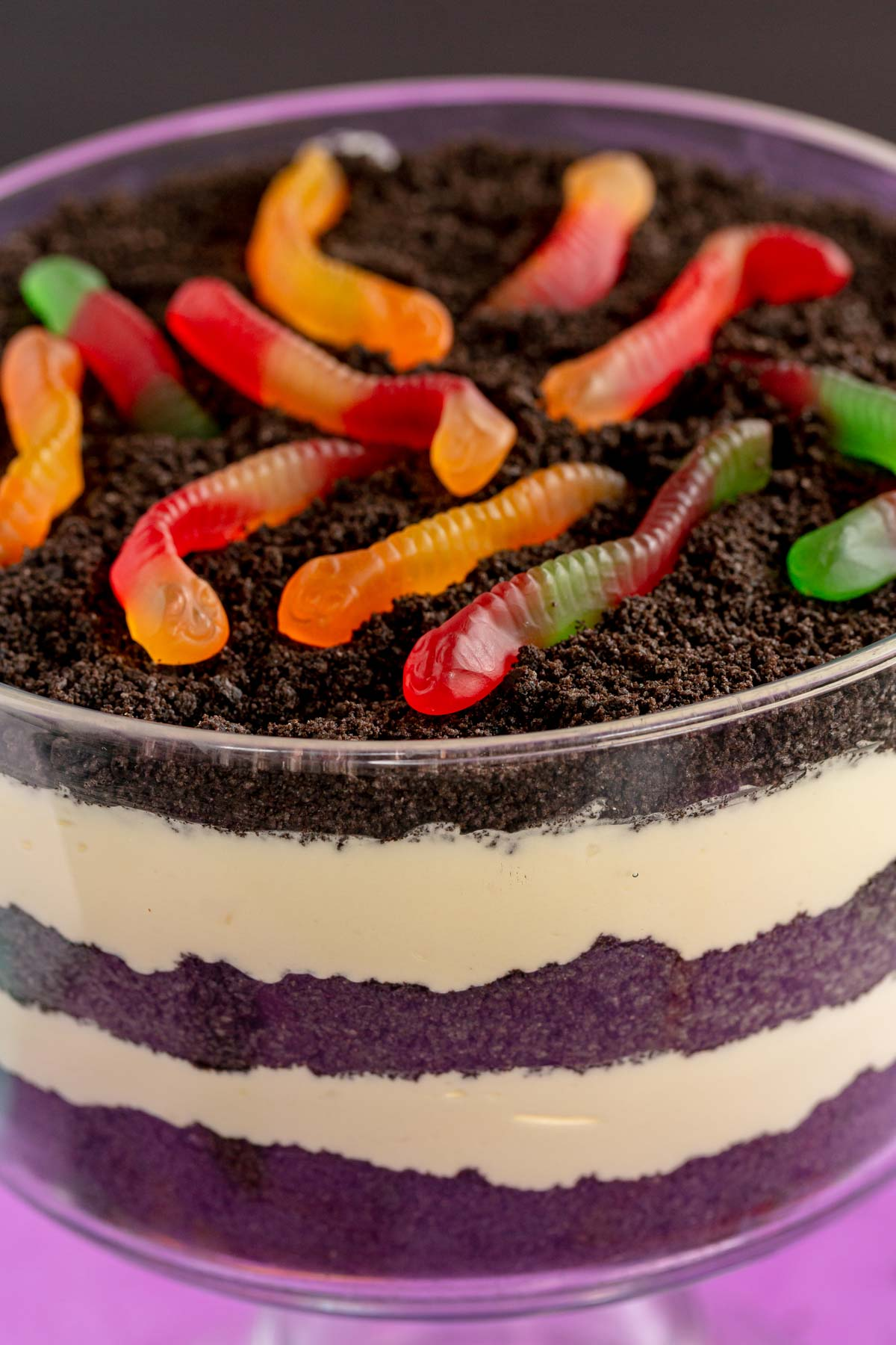 Close up view of worms on top of an Oreo dirt cake